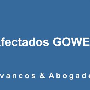 Afectados Gowex Yvancos Abogados